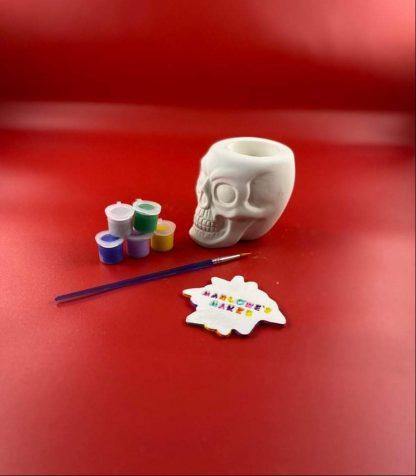 Skull pottery kits